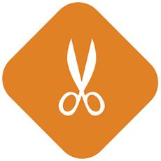 IconSartomini